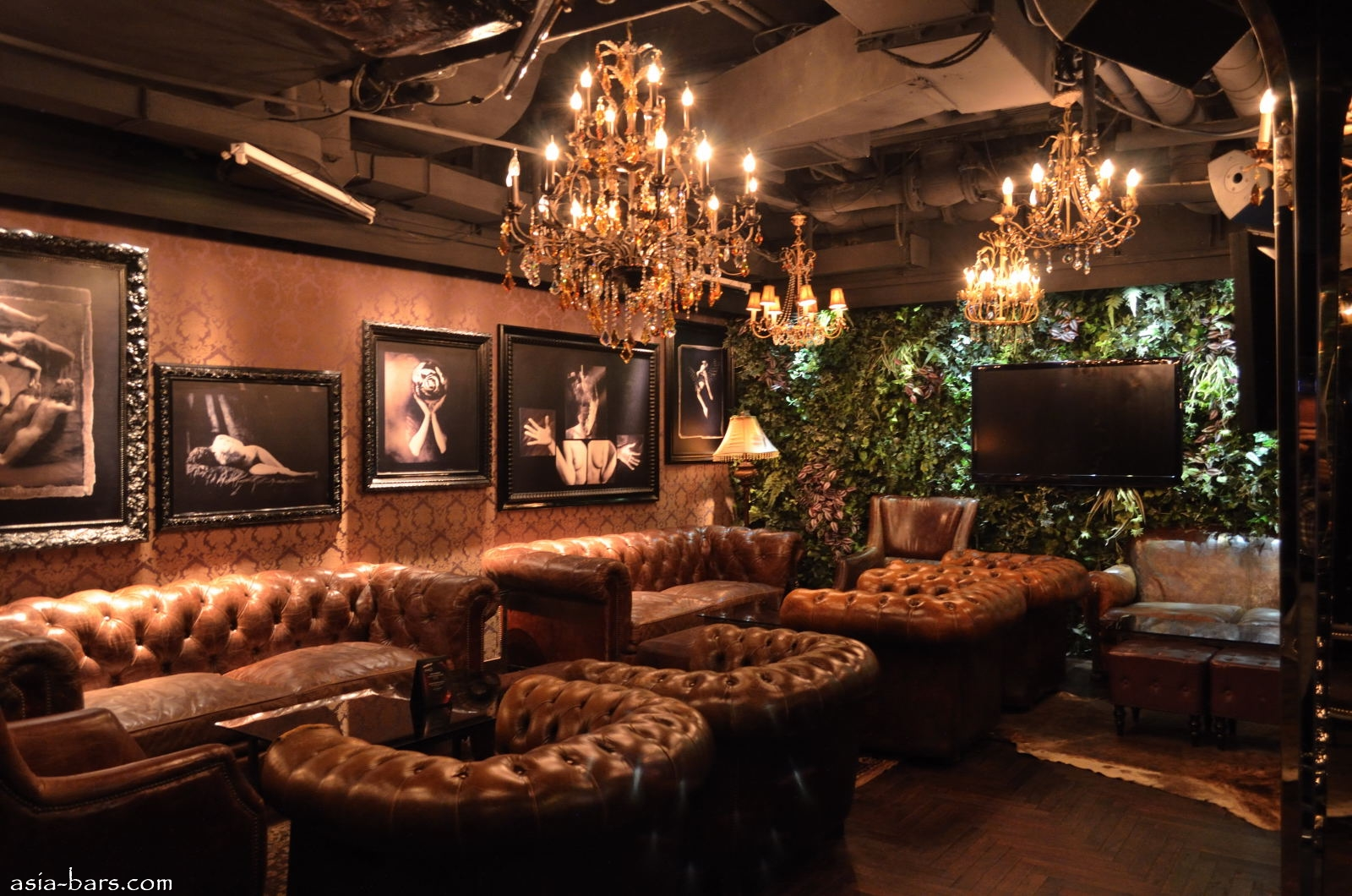 Halo Hong Kong Exclusive Members Only Lounge Consumate
