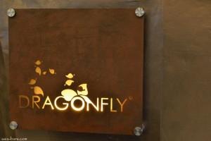 dragonfly jakarta