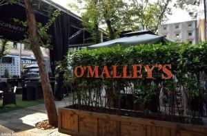 omalleys shanghai